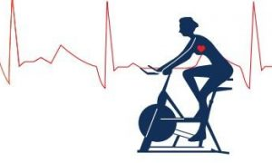 运动康复产业现状分析